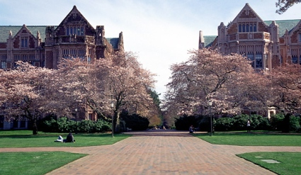university of washington seattle admissions essays